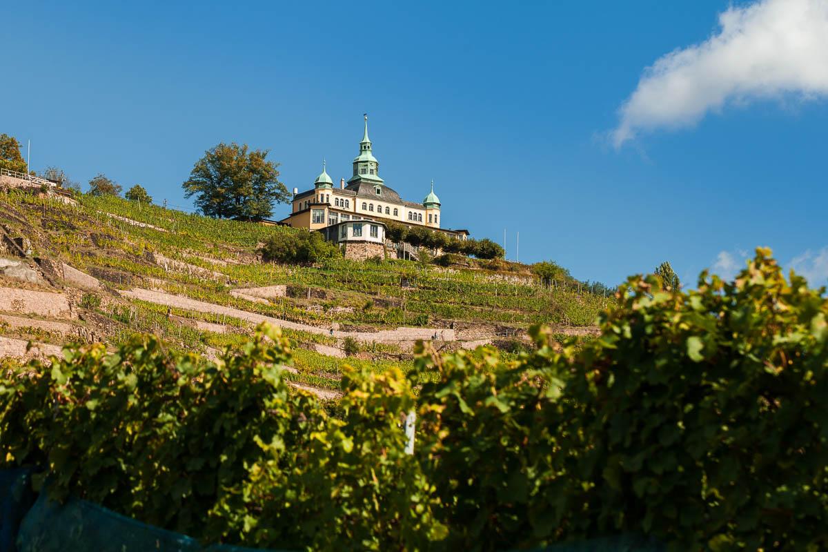 Das Spitzhaus in Radebeul